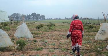 Égalité des sexes : le long combat des Soulaliyate