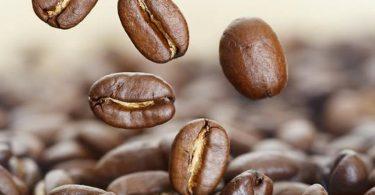 la-cafeine-un-remede-contre-alzheimer-pour-les-femmes