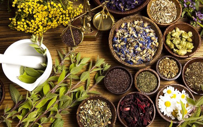 Medicinal plants: 5 plants that really heal - Moroccan ladies
